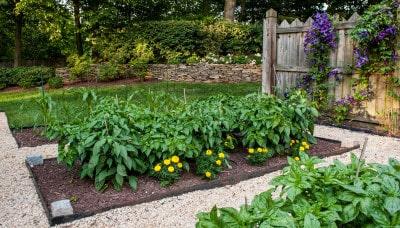 D & A Dunlevy Landscapers Garden