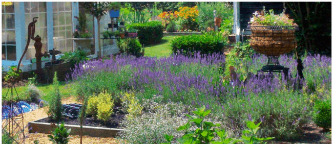 Day Trip Series - Blooming Hill Gardens - D & A Dunlevy Landscapers ...